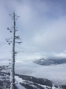 Blackcomb Mountain 7th Heaven