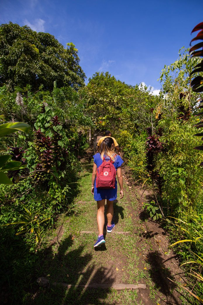 Tet Paul Nature Trail St. lucia